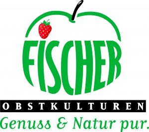 logo_fischer_2017_4c
